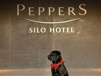 Exterior - Peppers Silo Hotel