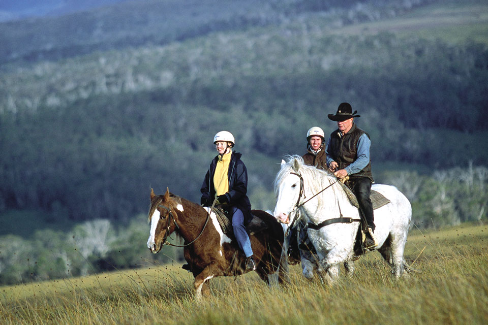 Horse riding treks on Cradle Mountain