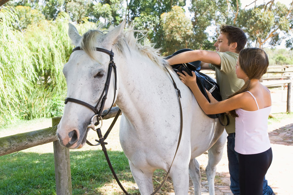 Hire a horse in Daylesford