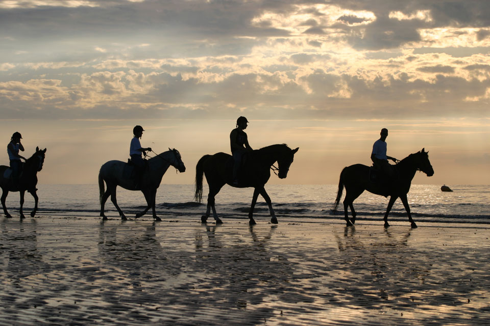 Hire a horse and go for trek on the Gold Coast